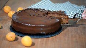 Kawałek Sacher tort zdjęcie wideo