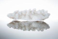 Kawałek solankowy kryształ od Jordania Zdjęcia Stock