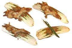 Kawałek sosna przedmiota barkentyna odizolowywający set Zdjęcia Stock