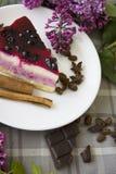 Kawałek wyśmienicie cheesecake 01 Zdjęcia Stock