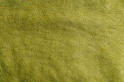 Kawałek Złota skóra Zdjęcie Stock