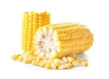 Kawałki świeży kukurydzany cob, obrazy royalty free