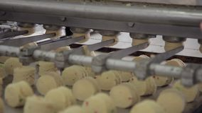 Kawałki ciasto tworzą używać automatycznego przyrząd w warsztacie salowym piekarnia zdjęcie wideo