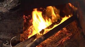 Kawałki drewna palenie na ogieniu zbiory wideo
