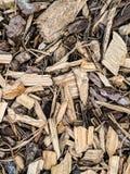 Kawałki drewno zdjęcia royalty free