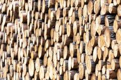 Kawałki drewno po ciąć obraz stock