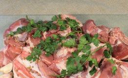 Kawałki mięso z pikantność zdjęcie stock