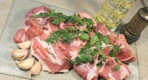 Kawałki mięso z pikantność Obrazy Royalty Free