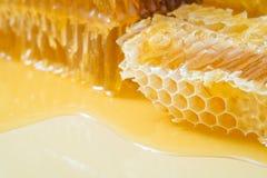 Kawałki pszczoły honeycomb zbliżenie Obrazy Royalty Free