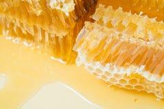 Kawałki pszczoły honeycomb zbliżenie Zdjęcie Stock