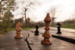 kawałki szachowi zdjęcia royalty free