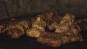 Kawałki wieprzowina, wołowina kurczak i mięso polędwicowi i gotują na grilla grillu Kiełbasy, szaszłyk i shish kebab zbiory