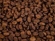 Kawa Beans/1 fotografia royalty free