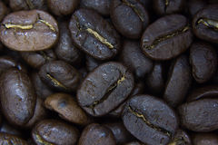kawa, blisko fasoli Fotografia Stock