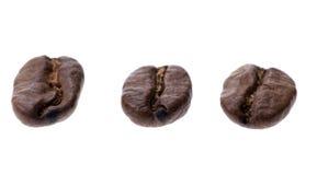 kawa bobowa występować samodzielnie Obraz Stock