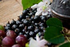 Kawa, czarny rodzynek, agrest, kwiat Obraz Stock