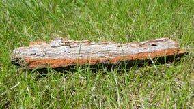 Kawałek barkentyna na zielonej trawie obrazy royalty free