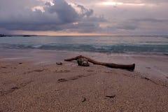Kawa?ek drewno na piasku Kuta Bali pla?a przy p??mrokiem fotografia royalty free
