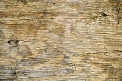 Kawałek dykta Obrazy Stock
