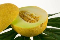 Kawałek melon Fotografia Royalty Free