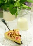 Kawałek rabarbarowy kulebiak Zdjęcie Royalty Free