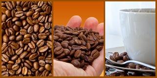Kawa - fotografia kolaż obrazy royalty free