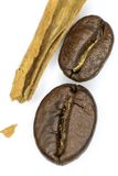 Kawa i cynamon Fotografia Stock