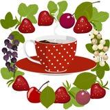 Kawa i owoc ilustracji