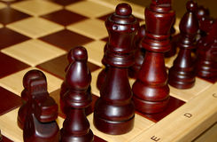 kawałki szachowi drewnianych Obrazy Royalty Free