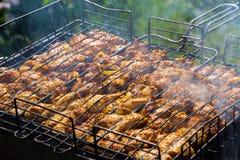 Kawałki wieprzowina na grillu Obraz Stock