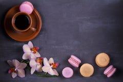 Kawa, orchidee, tortowy macaron i macaroon na szarym tle od above, Zdjęcie Royalty Free