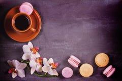 Kawa, orchidee, tortowy macaron i macaroon na szarym tle od above, Zdjęcie Stock