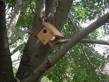 Kawa ptaka blaszany dom Zdjęcia Royalty Free