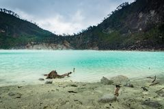 Kawa Putih, ` weißes Krater ` in Bandung, West-Java, Indonesien Stockfotografie