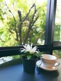 Kawa w ranku Obrazy Royalty Free