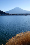 Kawaguchi lake and Mount Fuji in Japan.  stock images
