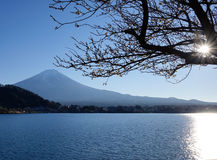 Kawaguchi lake and Mount Fuji in Japan. Kawaguchi lake and Mount Fuji at the sun light in Japan royalty free stock image