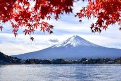 Kawaguchiko озера в осени Стоковое Изображение