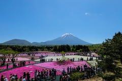 KAWAGUCHIKO, JAPÃO - 3 de maio de 2016 - festival de Shibazakura em 2016, Imagem de Stock Royalty Free