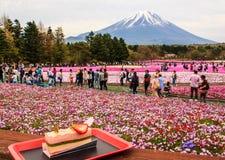 KAWAGUCHIKO, JAPAN-MAY 07,2017: Туристы наслаждаются десертом перед взглядом красивого различного покрашенного shiba Сакуры флокс Стоковые Изображения RF