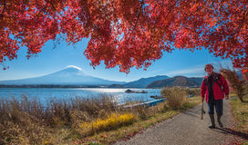 KAWAGUCHIKO LAKE, JAPAN - November, 24, 2014: Fisherman at Kawag Stock Images