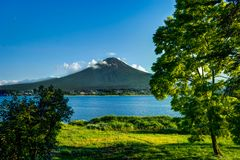 View to Mount Fuji with Flowers in Summer with blue sky and clou Stock Image