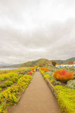 Kawaguchiko See mit Wegweg in Japan Stockfoto
