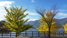 Kawaguchiko sjö, Fuji, Japan Arkivbild