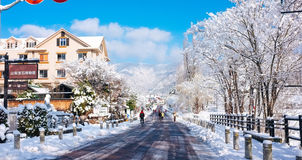 Kawaguchiko village , Japan. Many people in village are walking and playing snow very funny. Blue sky and many trees on the road Stock Photography