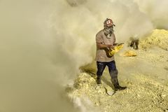 Kawah伊真火山收集变硬的硫磺,印度尼西亚的硫磺矿工 库存图片
