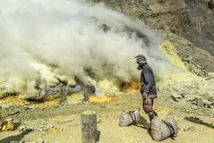 Kawah Ijen sulphur miner collecting solidified sulphur, Indonesia Stock Image