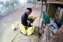 Kawah ijen sulphur worker Royalty Free Stock Image