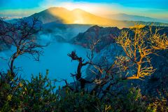 Kawah Ijen volcano with trees during beautiful sunrise in East Java, Indonesia royalty free stock photos
