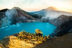 Kawah Ijen volcano with trees during beautiful sunrise in East Java, Indonesia stock image